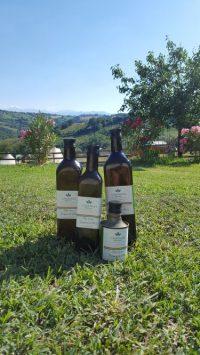 Biologische producten, Camping44, Le Marche, Loro Piceno